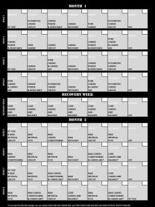 The Insanity schedule.