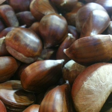 Fresh Italian chestnuts at the Granville Island Public Market were just begging to be photographed. I wish I had access to a wood burning stove or fireplace to cook these babes.