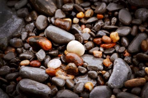 Beach rocks from Brighton, ON.