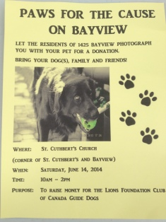 Paws for a Cause poster.