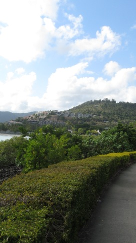 The paths are thick with greenery along the boardwalk at Airlie Beach in The Whitsundays. Photo by: Leviana Coccia.