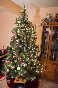 The final product. Definitely love our tree this year.