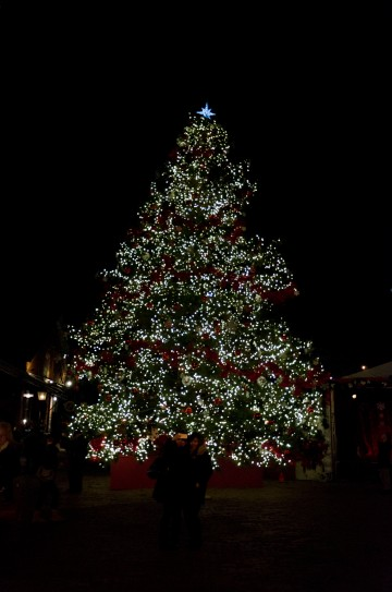 The beautiful Christmas tree lit up at night.