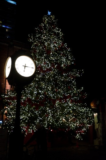 The 45 ft pine in the centre of the Market.