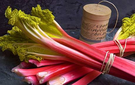 Rhubarb, which I grew up believing was a fruit, is actually a vegetable and will hit its peak from April to June. However, this delicious treat can be easily grown and enjoyed until the later summer months. Photo by: Creative Commons.