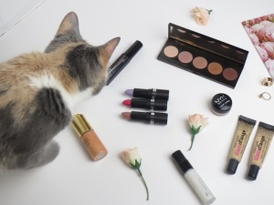 """My cat (and dog) work hard behind the scenes,: Romy. Photo courtesy of: YMOR Beauty."