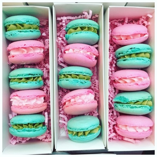 Macarons by The Cake Mama. Courtesy of: Jzabela De Paz.